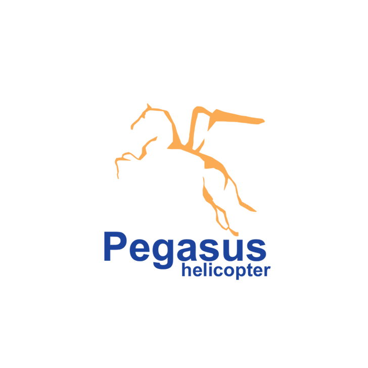 Pegasus Helicopter